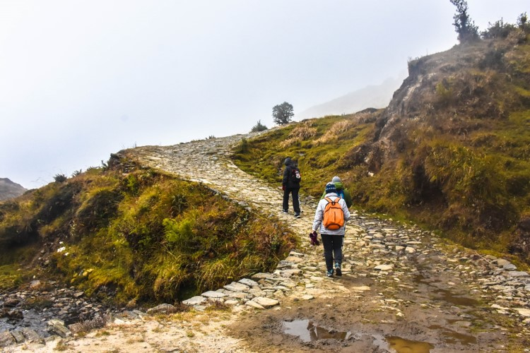 Read more about the article A detailed guide to the Sandakphu trek